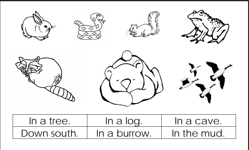 D A D F Bbe B D F together with Be F Cf F Ddd D B Db A A as well Wp B Bc furthermore D A A A B Fbfc in addition D E Fae Cc E C B D B. on b is for bear worksheets preschool